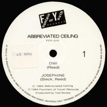 abbreviated ceiling black vinyl
