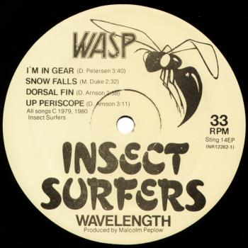 insect surfers vinyl