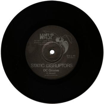 static disruptors vinyl