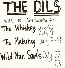 dils ad